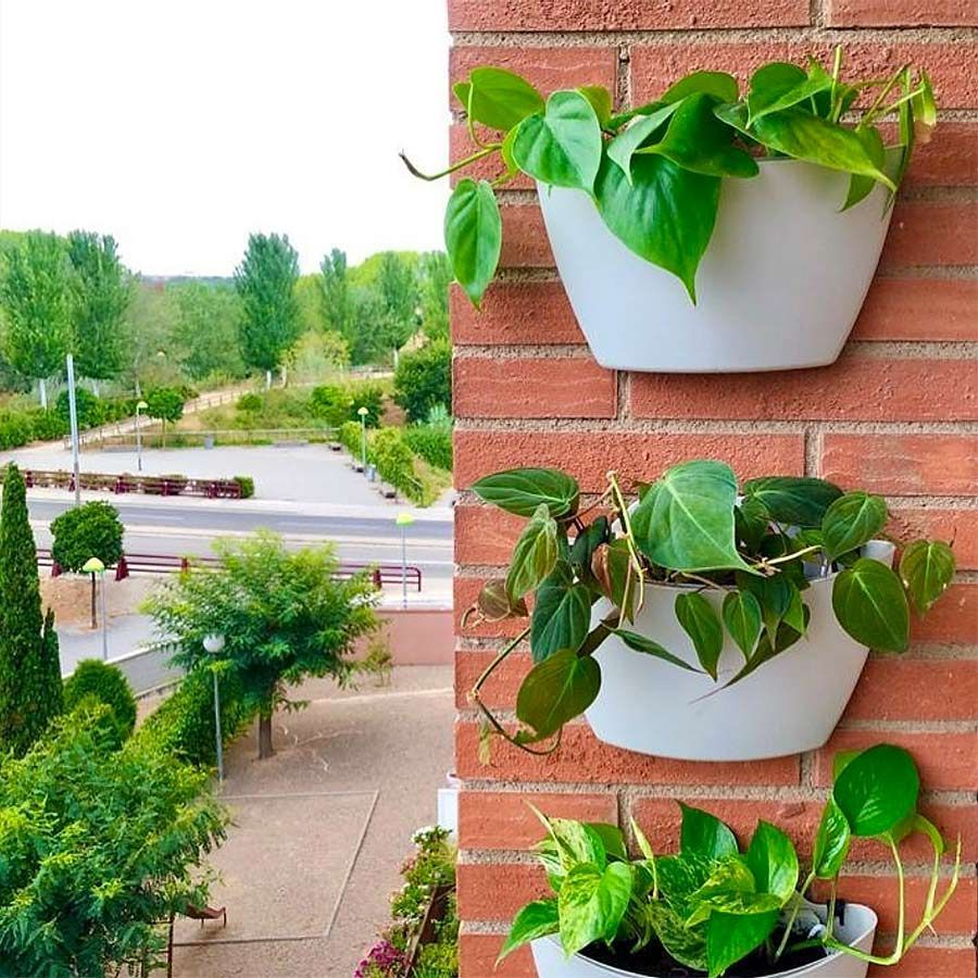 Citysens wall pot